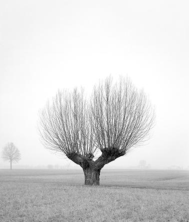 Paola de Pietri Sans titre, série Questa Pianura, 2014