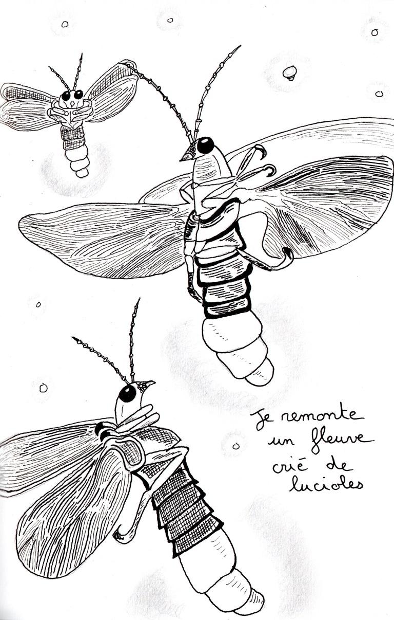 """Poème """"Je marche"""" de Kenny Ozier Lafontaine. Page n°7.jpg"""