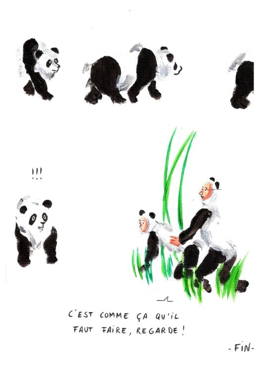 pandas6Yaya(1).jpg